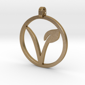 vegan_pendant_hollow_polished_gold_steel2